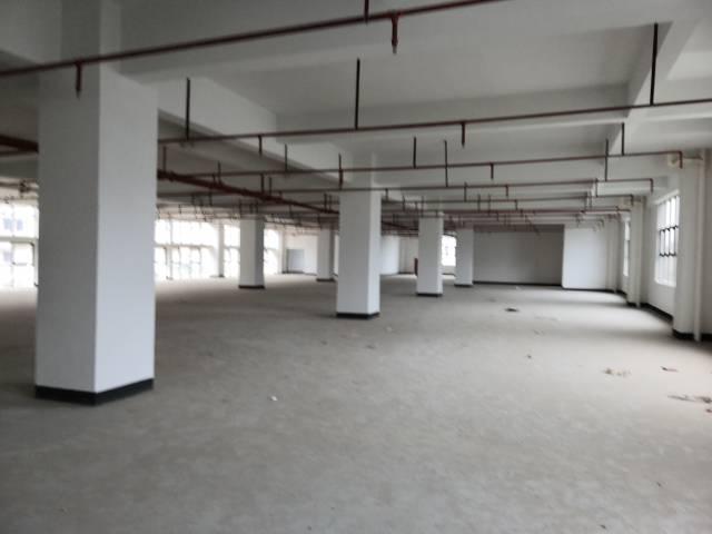 惠州仲恺高新区潼桥标准独院厂房6000平方出租-图3