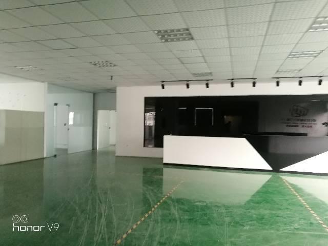 深圳市光明区公明上村新出豪华装修厂房2260平方一整层无转让