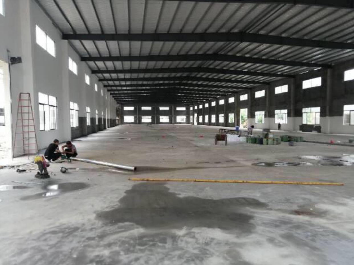 园洲在建3万平全新钢构出租:厂房面积:3万平栋数:5栋