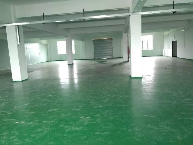 沙井新桥新出550平厂房带装修办公室招租,