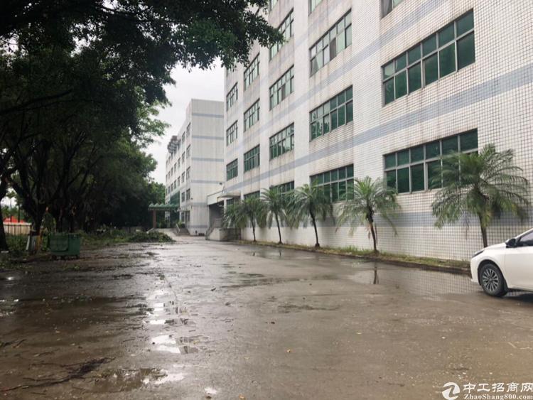 观澜福民观澜大道旁边一楼适合做仓库800平报价18