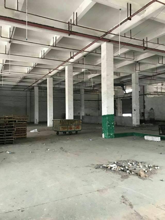 原房东带豪华装修办公室厂房全新出租了-图3