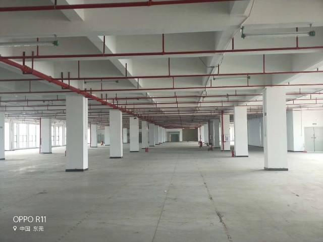 形象好重工业厂房2100平,位于主干道旁。3部3吨货梯,双楼