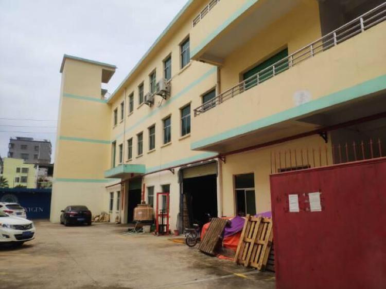大岭山标准厂房出售占地3000平方建筑5480平方村委38