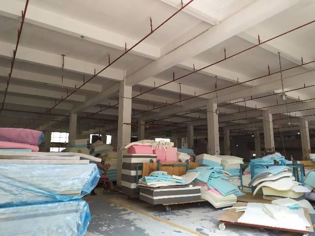 惠阳新圩工业园区标准厂房一楼2100平出租滴水6.5米-图3