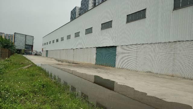 广州新塘现成物流仓库单一层10米滴水可办环评电可报装