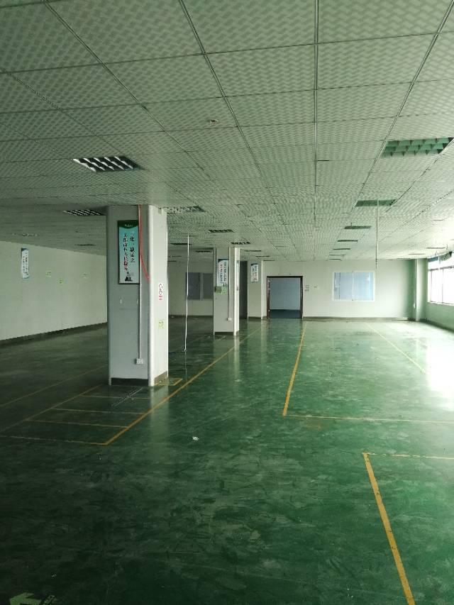 福永塘尾大型工业园1300平方厂房出租