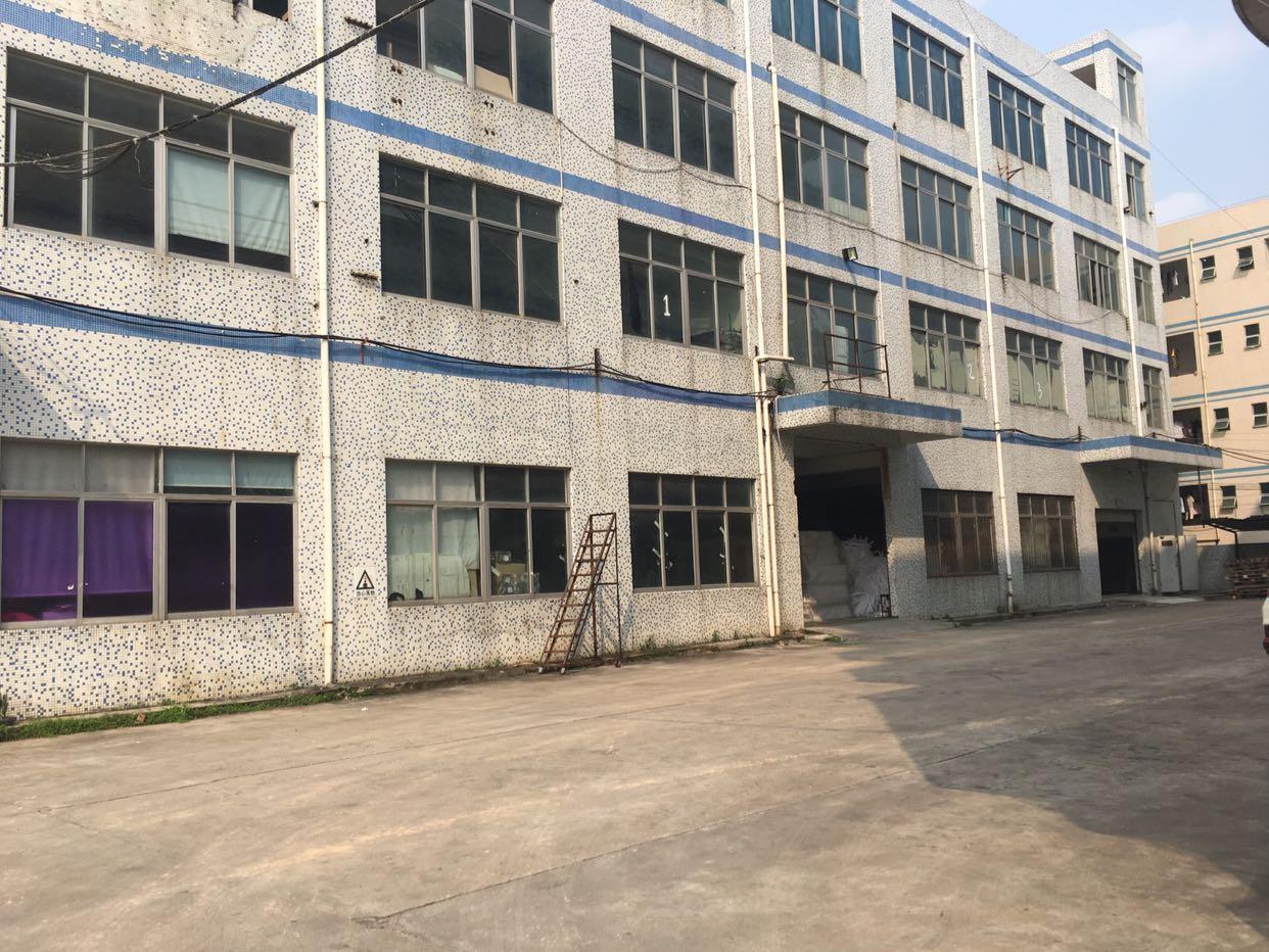 上木古宝来工业区200平500平1000平厂房大小招租