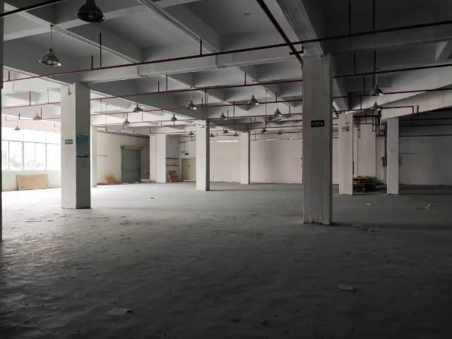 科苑城楼上1000平,现成办公室装修,园区空地大