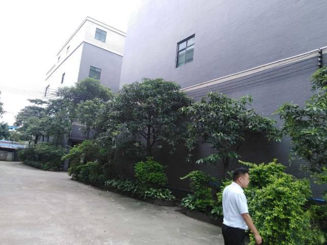花东镇金田工业区标准厂房证件齐全可办环评大小可分租