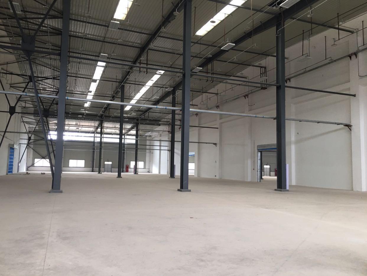 优质仓库出租最低分割2400平-图7