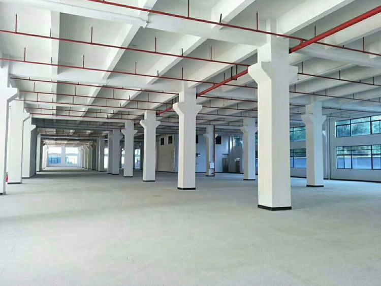 广州市番禺区石基镇标准楼上2300方,带红本、可办环评-图3