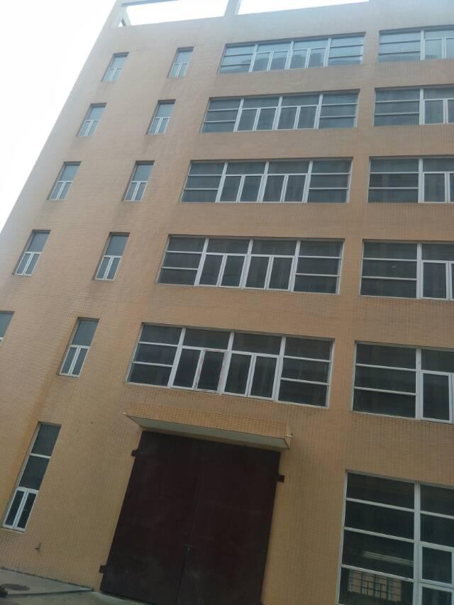 出租黄陂前川13500平整栋厂房-图4