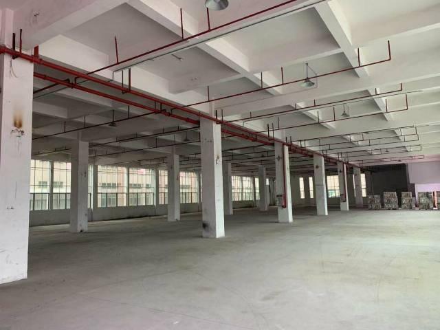 沙田镇新出一楼厂房1500方