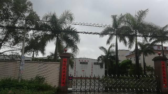 陈江占地3300,建筑2500,钢构厂房售价395万。