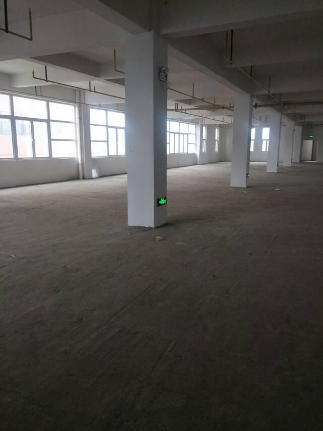 出租黄陂前川13500平整栋厂房-图3