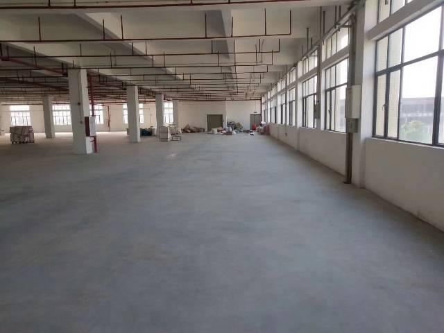 番禺石基独院10000平厂房招租,带红本,可办环评,可分-图6