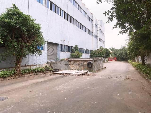 东莞市虎门镇物流电商仓库的福音24000平米