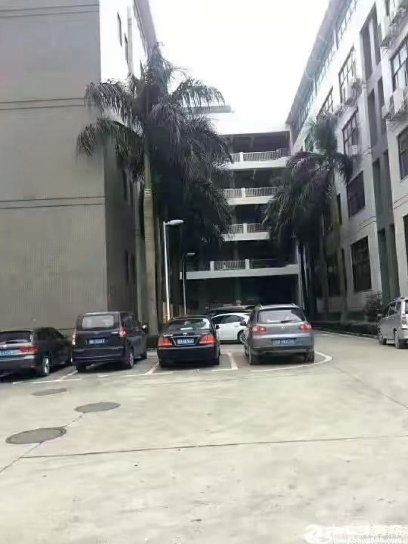 新出黄埔东区街道新出楼上1550平米带装修厂房招租