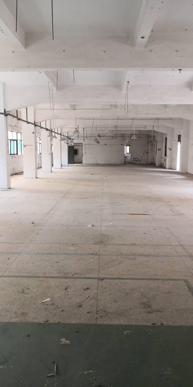 塘厦四村新出楼上2-3层1000平方,面积实在一手房东
