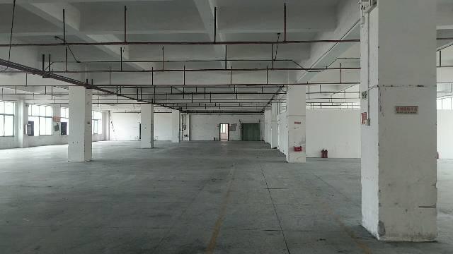 东莞食品厂房4200方食品加工食品仓库粮油加工
