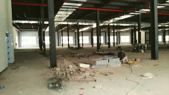 沥林镇钢结构厂房