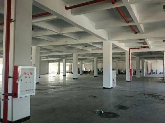 黄埔开发区东区原房东2楼整层1500平米厂房招租-图2