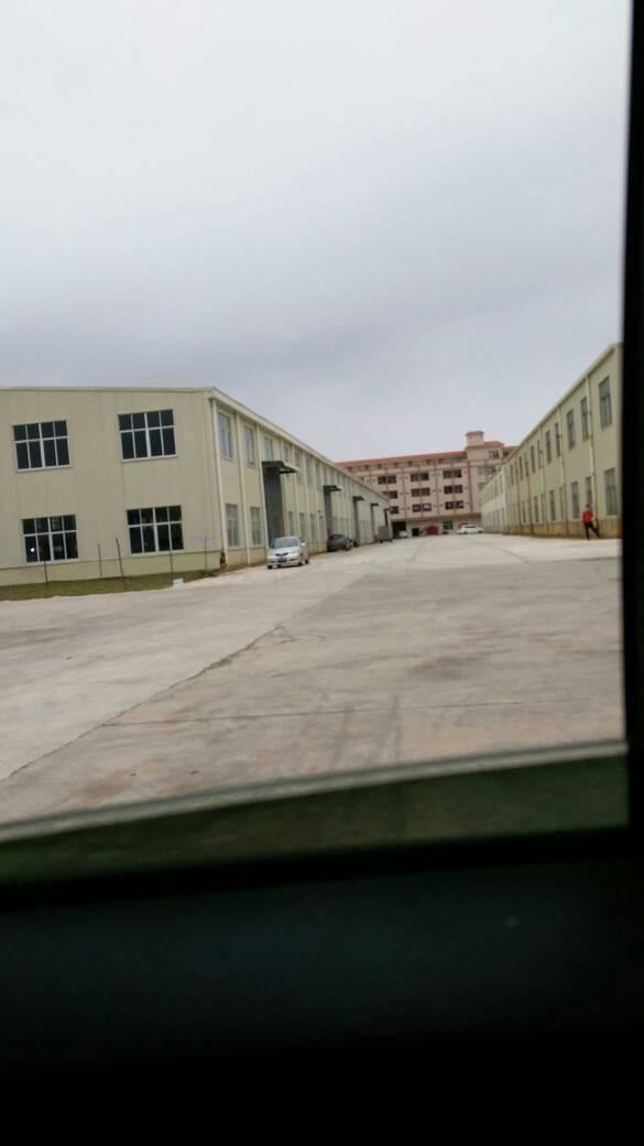 惠州市惠城区独门独院全新单层钢构厂房