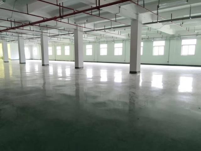 清溪镇新出高新产业园楼上一层4000平,豪华装修-图2