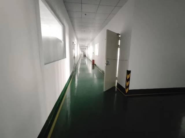 清溪镇新出高新产业园楼上一层4000平,豪华装修-图7