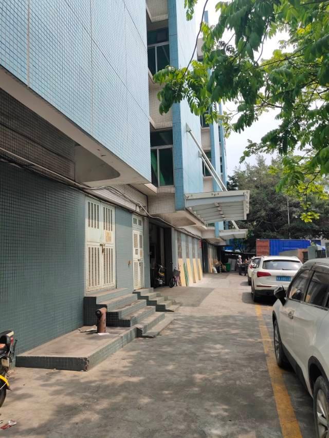 黄埔夏港才汇街新出1500平方精装修办公楼
