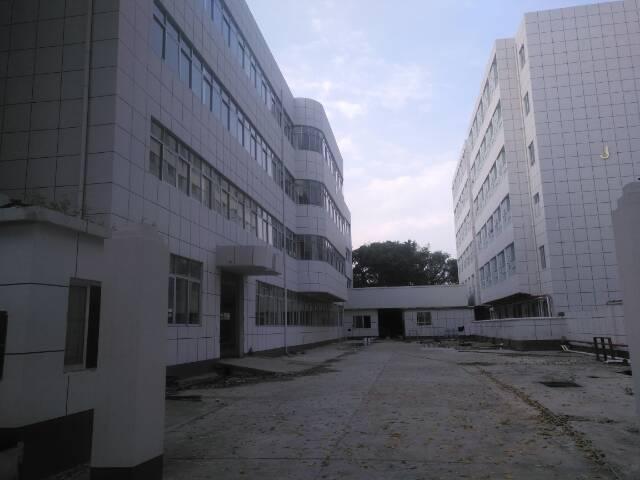 标准厂房独院1-4层8000平可分租环城路外可办环评