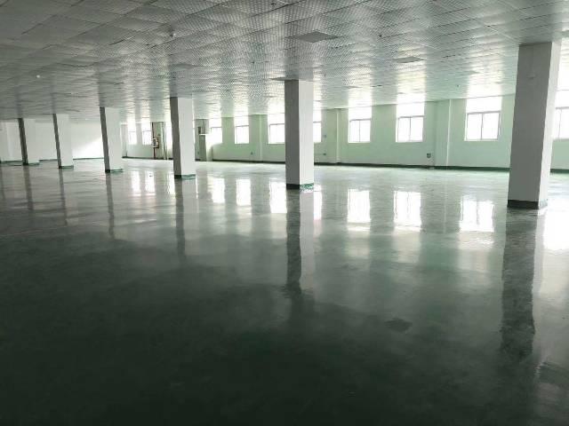 清溪镇新出高新产业园楼上一层4000平,豪华装修-图4