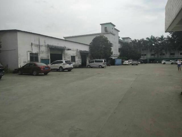 清溪镇砖墙到顶钢结构厂房540平方,报价18元每平方-图3