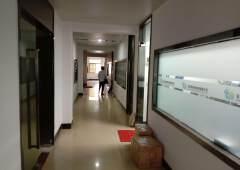 常平镇新出标准写字楼招租,环境优美,豪华装修