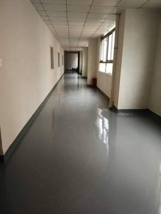 西乡鹤洲九围洲石路旁精装厂房1400㎡出租