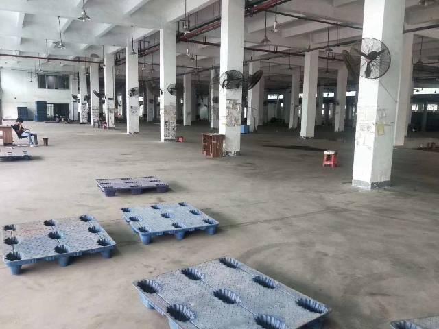 虎门镇沙角大型工业园厂房-图6