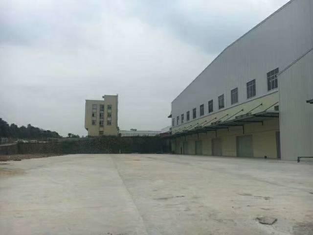 大亚湾石化区物流仓库出租19000平方