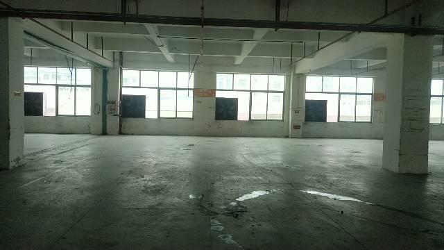 麻涌镇标准厂房3楼出租原房东可以办环评机械工厂