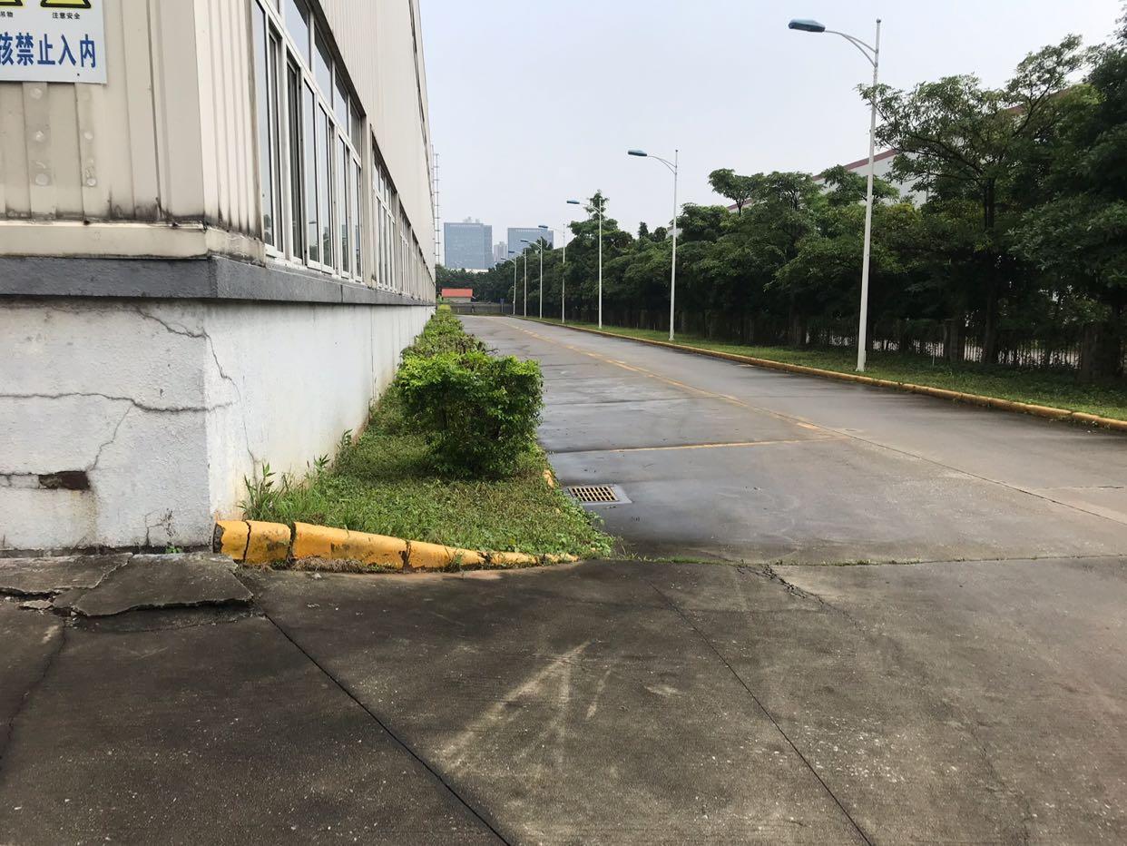 黄埔区东区大型工业区带25吨行车,单一层钢构万博app官方下载6500招租-图4