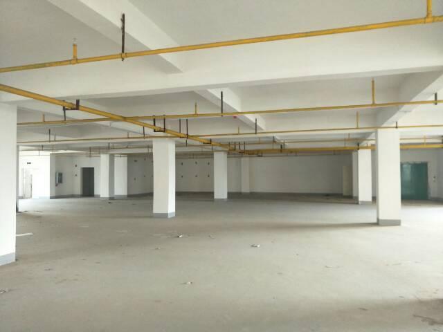长江新城900平米单层厂房,标准园区配套齐全,产权清晰