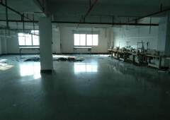 新空出办公楼,1400平方价格实惠