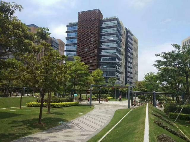 松岗带空调红本写字楼480平方原房东写字楼出租