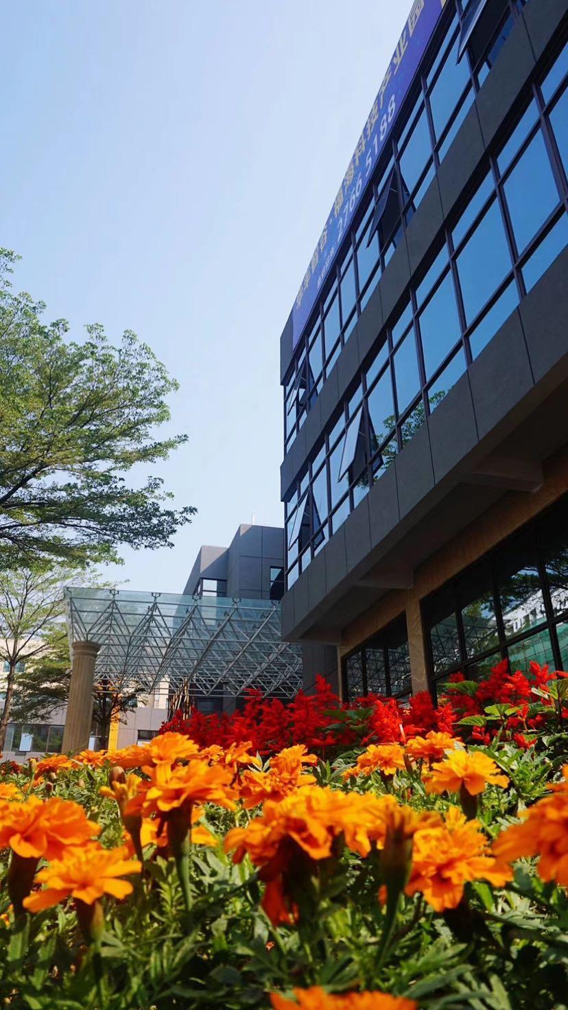 福永红本写字楼200平方起租,物业做隔间