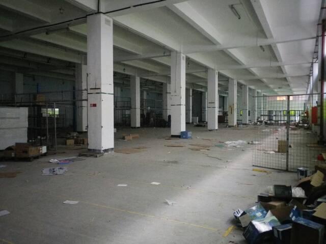 塘尾原房东独院一楼6米高2240平方厂房出租