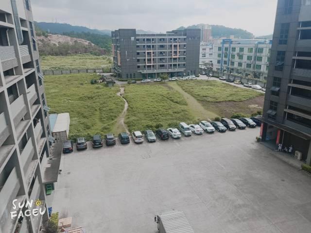 全新花园式厂房实际面积2000平出租,价格仅20元