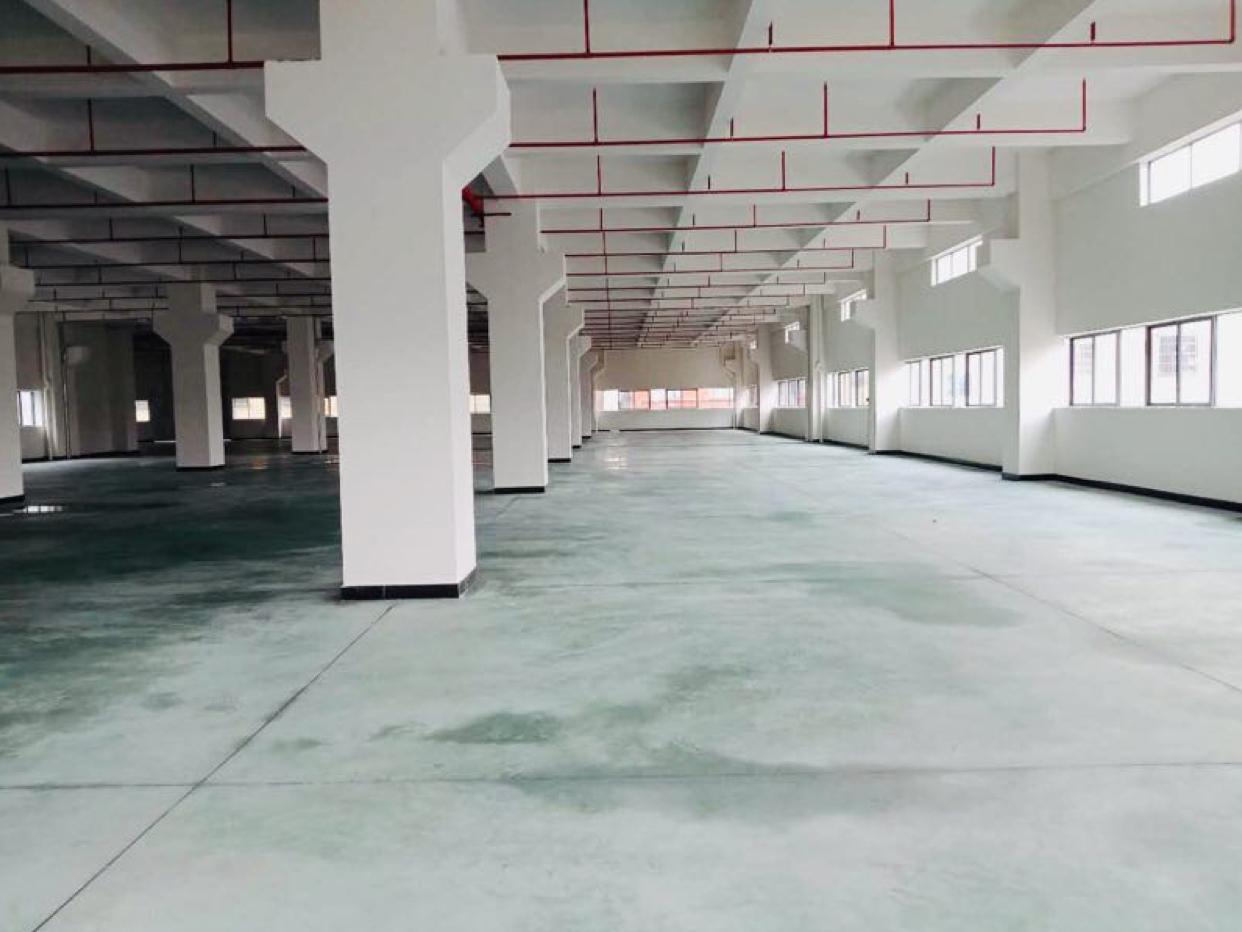 横沥大型工业区一楼厂房3000平方,高度7米带行车