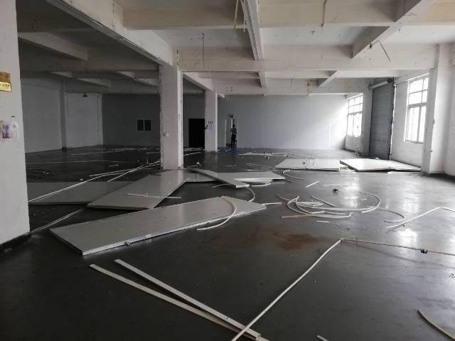 公明原房东实际面积900平米精装修厂房出租