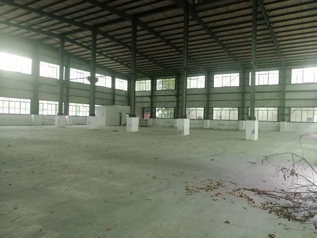 横沥镇新出独栋刚构厂房面积2000平方。-图2