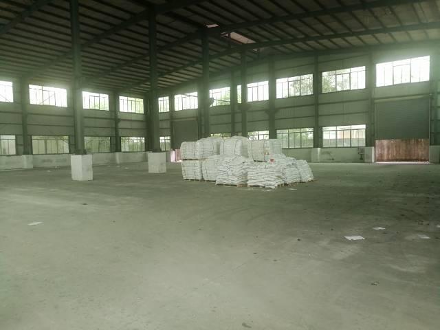 横沥镇新出独栋刚构厂房面积2000平方。-图3